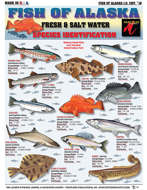 R Fishing Charts And Fish Identification