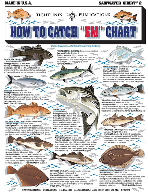Pollack Fluke Flounder P Haddock Weakfish Mackeral Red Drum Blue Marlin Skipjack Bluefin Tuna Albacore Yellowfin Shark